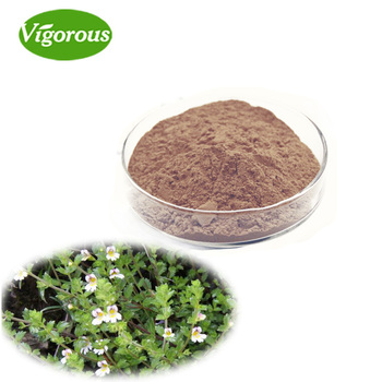Free Sample Water Soluble Eyebright Extract Powder