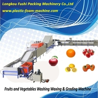 Best Quality mango and orange waxing and grading machine , apple picking machine