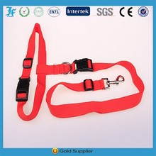 Hot New Products for 2015 Pet Collar Leash for dog