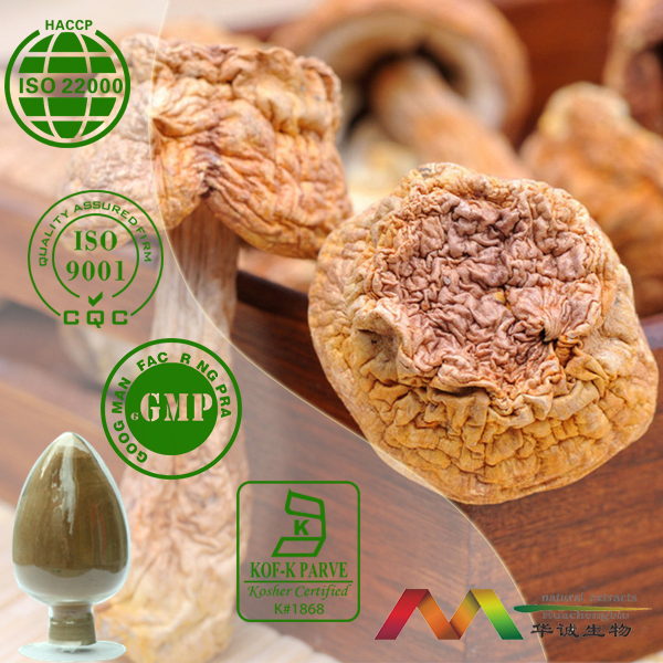 NSF-GMP Audited Supplier Best Polysaccharides Agaricus Blazei Powder, Agaricus Blazei Extract Powder