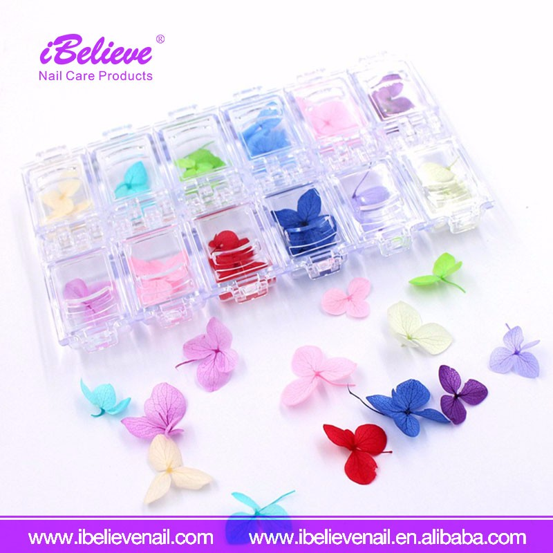 Organic Nail Products 12 Colors Natural Dried Flower Real Dry 3D Sticker