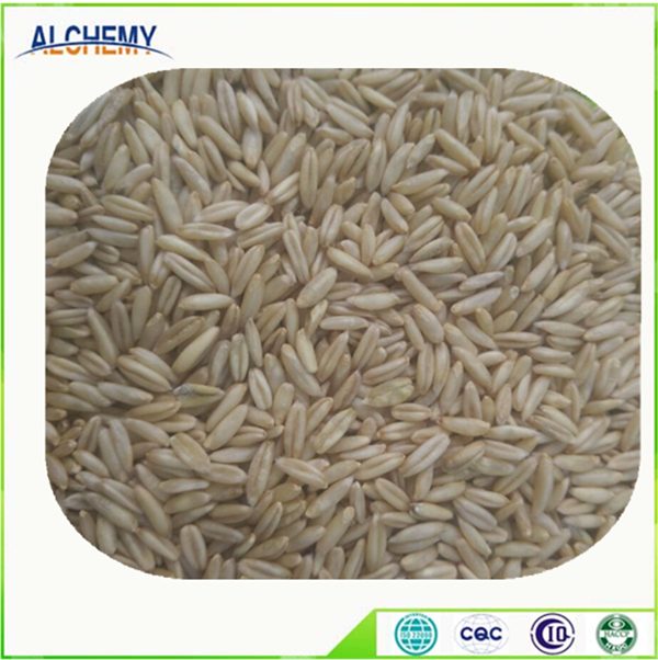 Husked oats wholesale prices