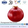 ISO Manufacturer sulppy High quality Pomegranate Peel extraction
