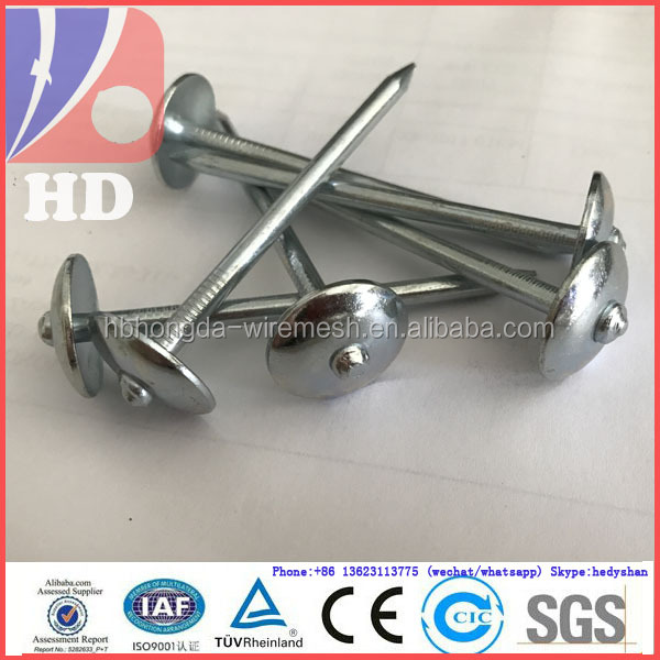 China original quality steel round wire roofing nails with umbrella head