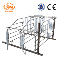 Pig Farming Equipment Sow Gestation Crates Individual Sow Pen Factory For Sale