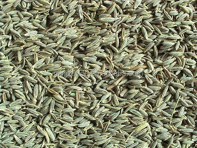 new crop cumin seeds from china