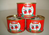 Inner Mongolia 198g canned tomato paste 2016