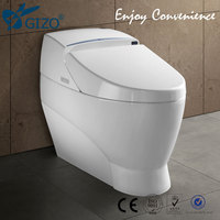 Hot Bathroom Toliet Ceramic Color Toilet Bowl One Piece Siphonic Toilet