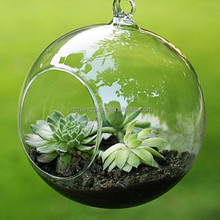 transparent glass bubble round shape Terrarium Hanging Glass Orbs for Home Decoration Garden Accessories