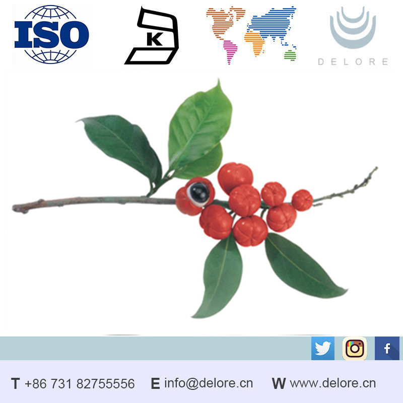 natural guarana extract 40% caffeine CAS No.:58-08-2