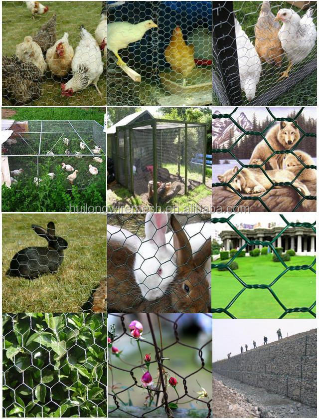 CAMEL HEXAGONAL WIRE MESH/CHICKEN NETTING