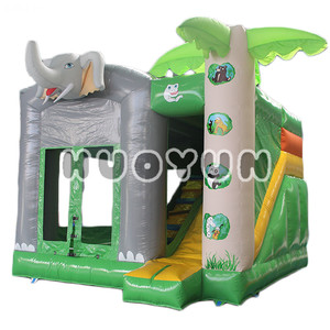 China Indoor Inflatable Baby Air Jumping Castle Bouncer Inside Slide