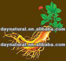 health care product, the best health supplement-------ginseng royal jelly oral liquid