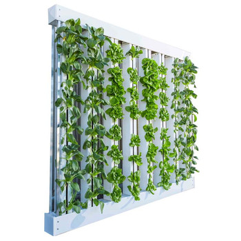 Automated Square PVC Industrial Vertical Hydroponic System
