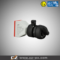 IECEx&ATEX Certified 2 Pole Explosion-proof Switch