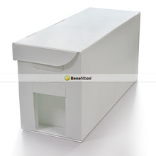 Beekeeping tool plastic beehive 5 frame beehive box for sale