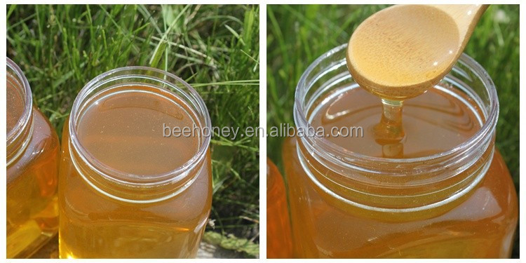 2015 New Crop Pure Vitex Honey for the Philippines Market