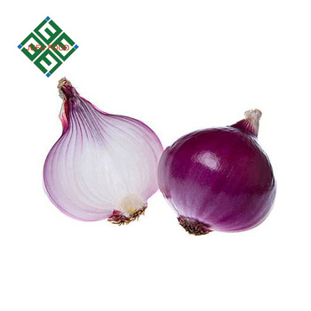 price for fresh big onion