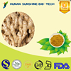 SunShine Chinese Medicine Ginger / Extract Flour for Warm Innards with good price