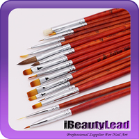 Professional kolinsky 16 pieces Nail Art Painting Drawing Brushes Pen Set