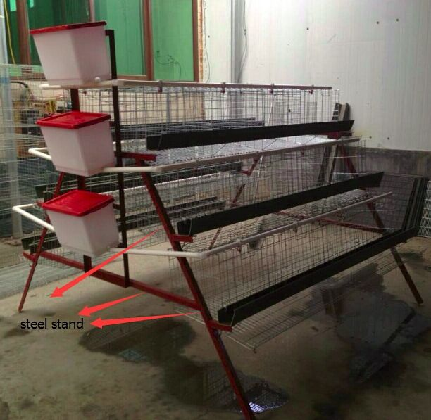 Wholesale design layer chicken farm layer cages for sale in zimbabwe