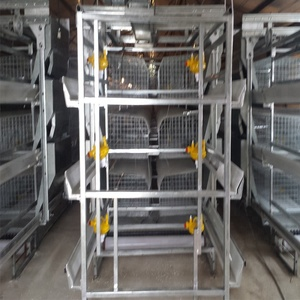 China hot sales modern design automatic layer poultry a-type battery chicken cage