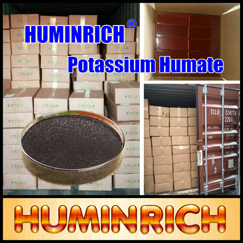 """HuminRich"" Peat Moss And Fertilizers Humic Acid Powder Potassium Soluble Humate"