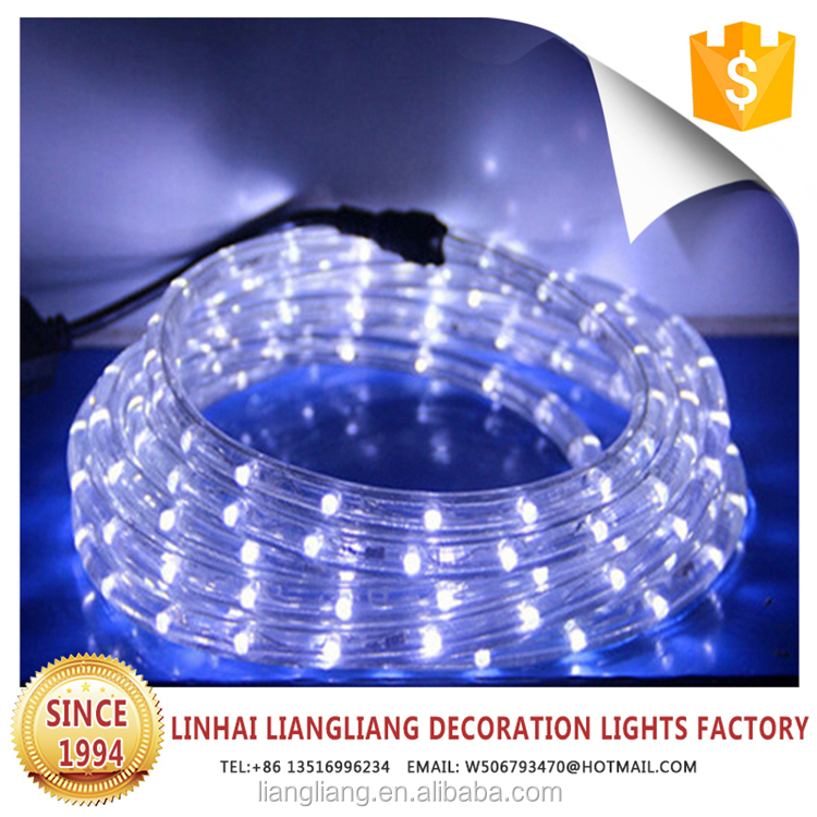 popular holiday led light swimming pool rope light