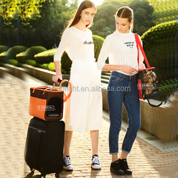 Pet Carrier for Airline Use