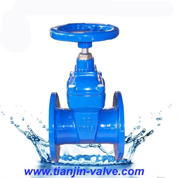 rising/non-rising stem BS5163 ductile iron yoke nut gate valve