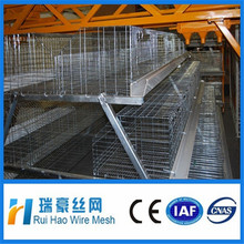Bottom price galvanized welded wire chicken cages