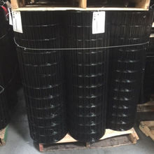 Black PVC Coated Galvanized Welded Wire Mesh Rolls
