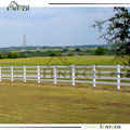 White four rail horse fencing