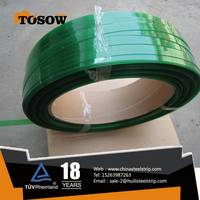 0.8*19mm China Supply For Green PET Strapping