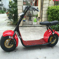 Double seat Citycoco Scrooser with LED light electric motorcycle 1000w Brand new Professional Multifunctional