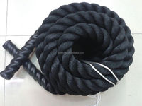 European and American Markets Battle Rope Training in Gym