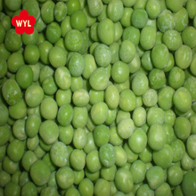 High Quality Chinese Fresh IQF Frozen Green Peas