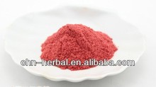 whole Sale Strawberry Fruit Juice Powder