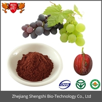 Gmp Standard Manufacture Supply Proanthocyanidin Grape Seed Extract Powder
