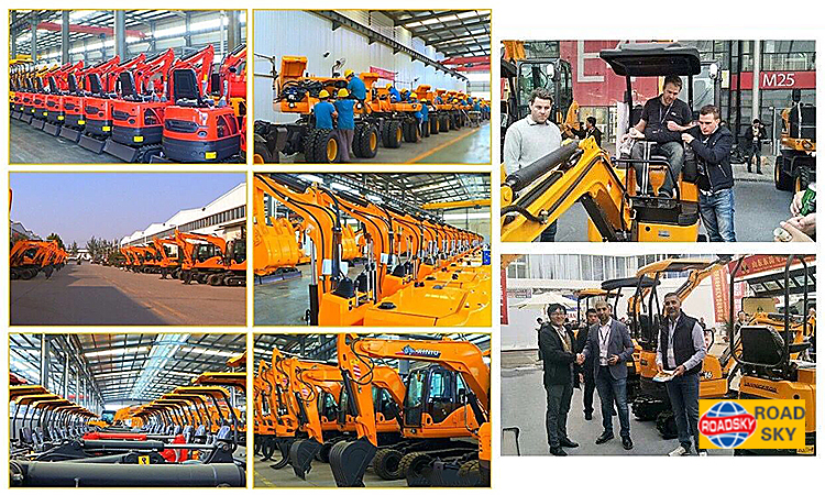 Hydraulic Crawler Agriculture Construction 800kg Mini Excavator