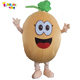professional watermelon mascot costumes custom made fruit costumes for sale EM-91
