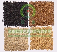 beer malt,all kinds of malt,price of barley malt