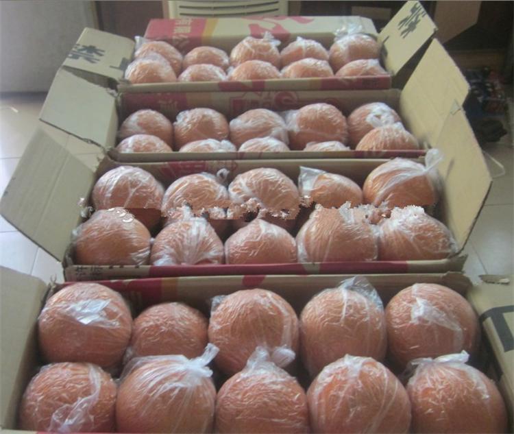 5'' hot sale concrete pump cleaning sponge balls