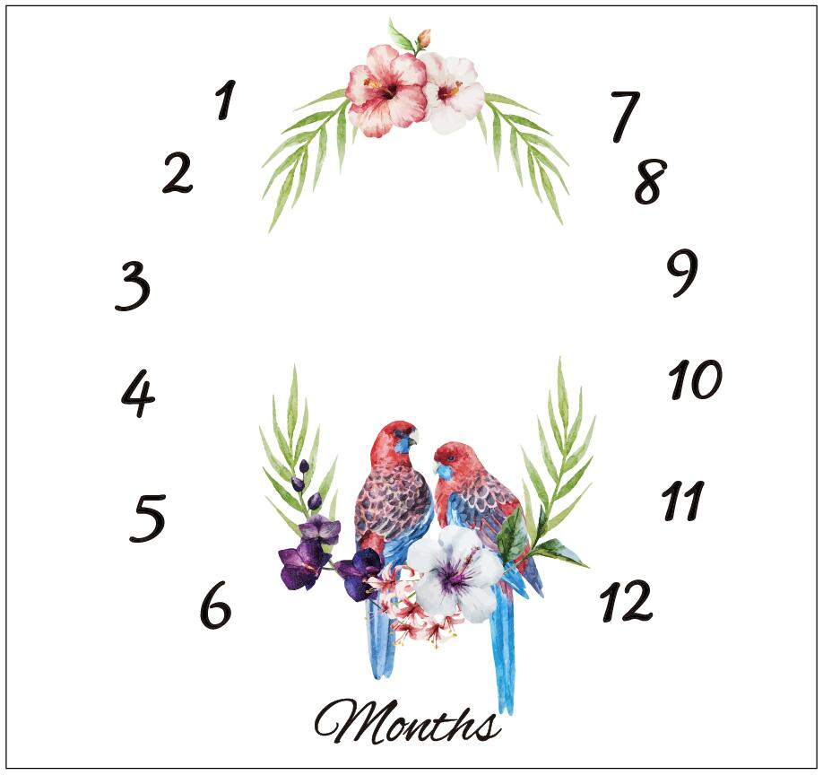 Newborn baby Monthly Milestone Photography Backdrop Baby milestone Blanket