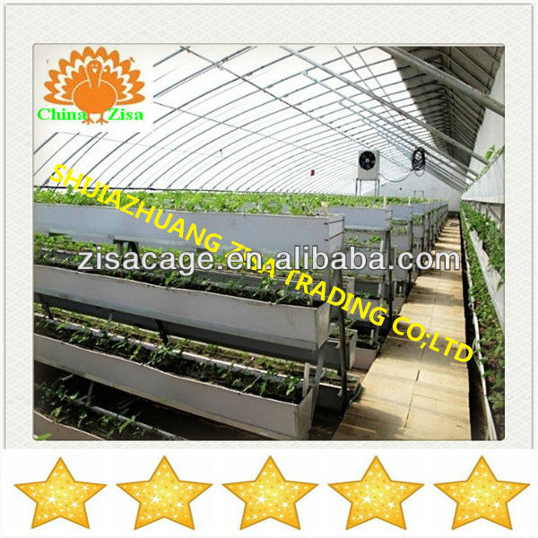strawberry vertical cultivation green house growing tray