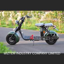 EEC COC Electric Scooter Citycoco 60KM range folding evo 800w enclosed