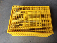 livestock transport cage /broiler transport cage / plastic chicken ( lydia chang 0086.15965977837)