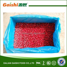 IQF frozen lingonberry