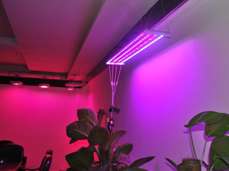 Custom Wavelengths Waterproof Greenhouse Indoor Plant Vertical Farming Aquaponics Hydroponic Systems Grow Led Light Bar