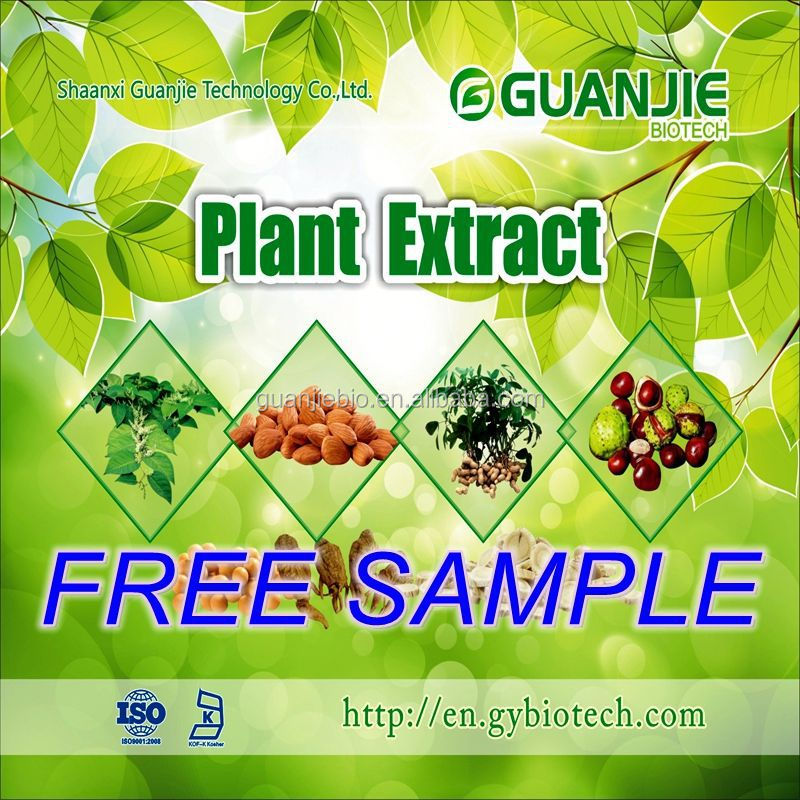 Top Quality From 10 Years experience manufacture Pueraria/Kudzu extract